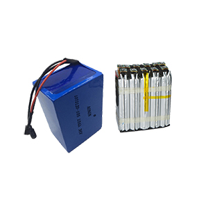 36V 10Ah 10S ebike battery pack